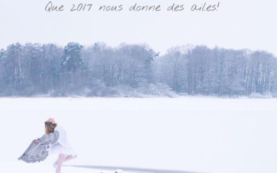 Belle et heureuse année 2017